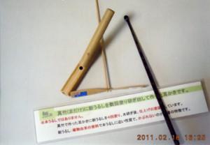 img424_竹楽遊人01